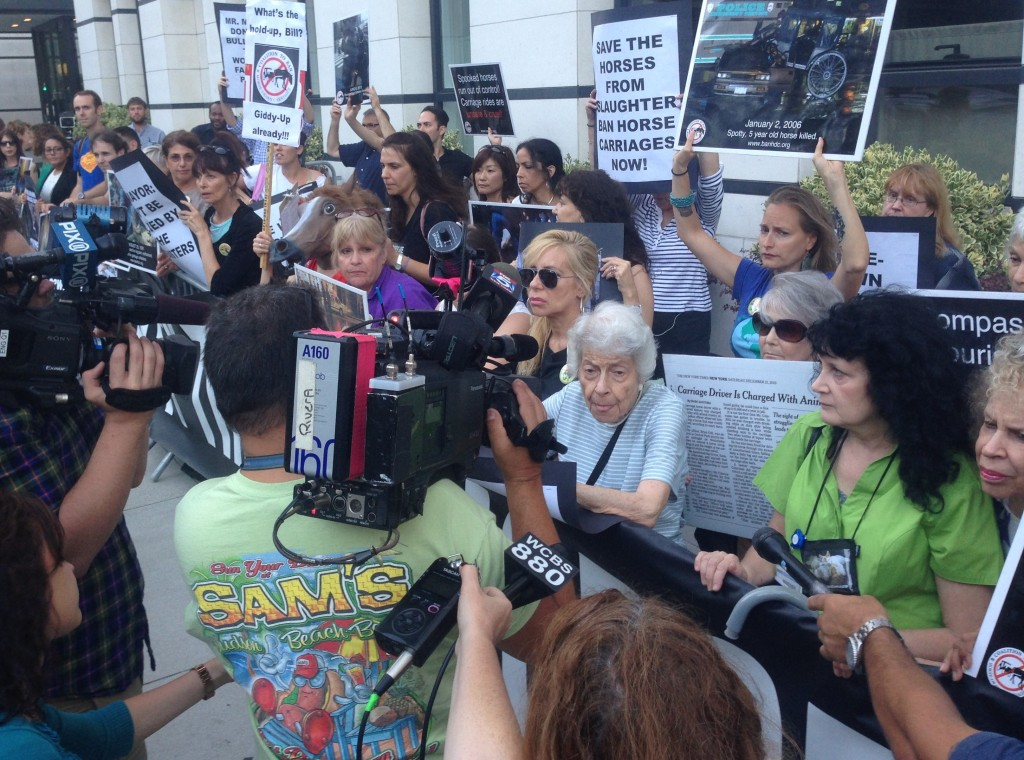 Coalition to Ban Horse Drawn Carriages Protest (photo: Donny Moss)