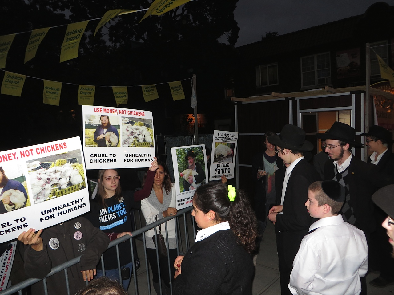 By and large, the practitioners cannot relate to the protesters' concerns about the chickens