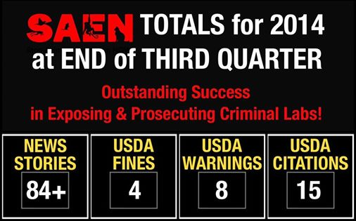 SAEN's recent victories