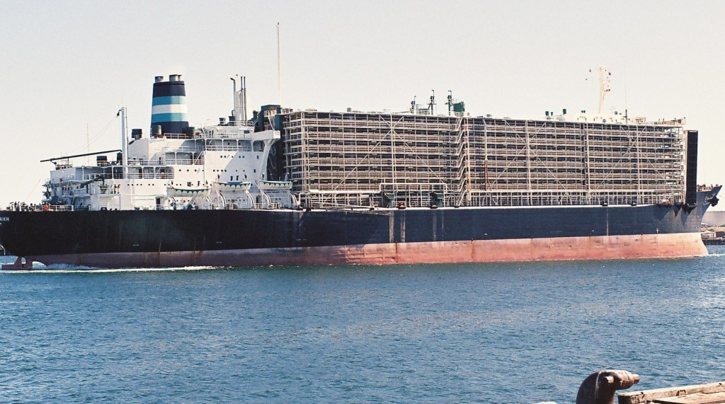 live-export-ship