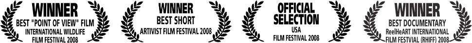 BLINDERS-awards