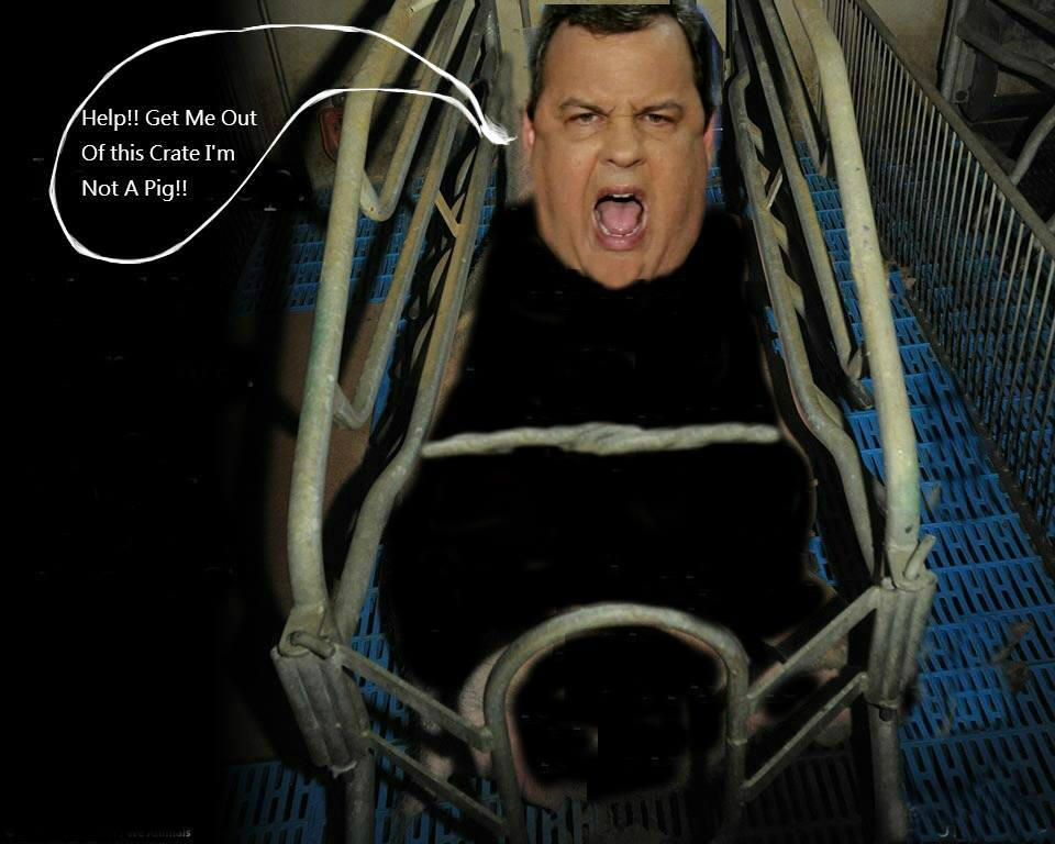 Chris Christie (Photo: Lee Day)