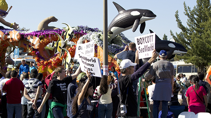 Activists protest SeaWorld float at Rose Bowl Parade