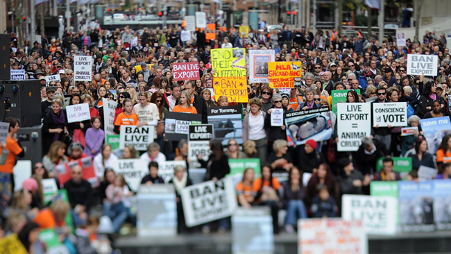Live export protest in Sydney (photo: James Morgan)