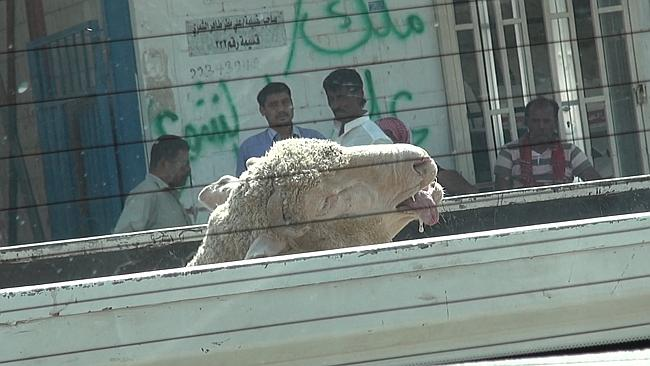 live export to Kuwait