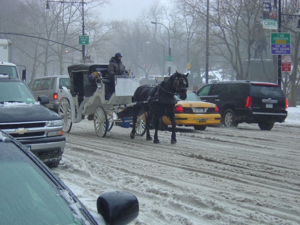 Breaking the law by working during snowstorm