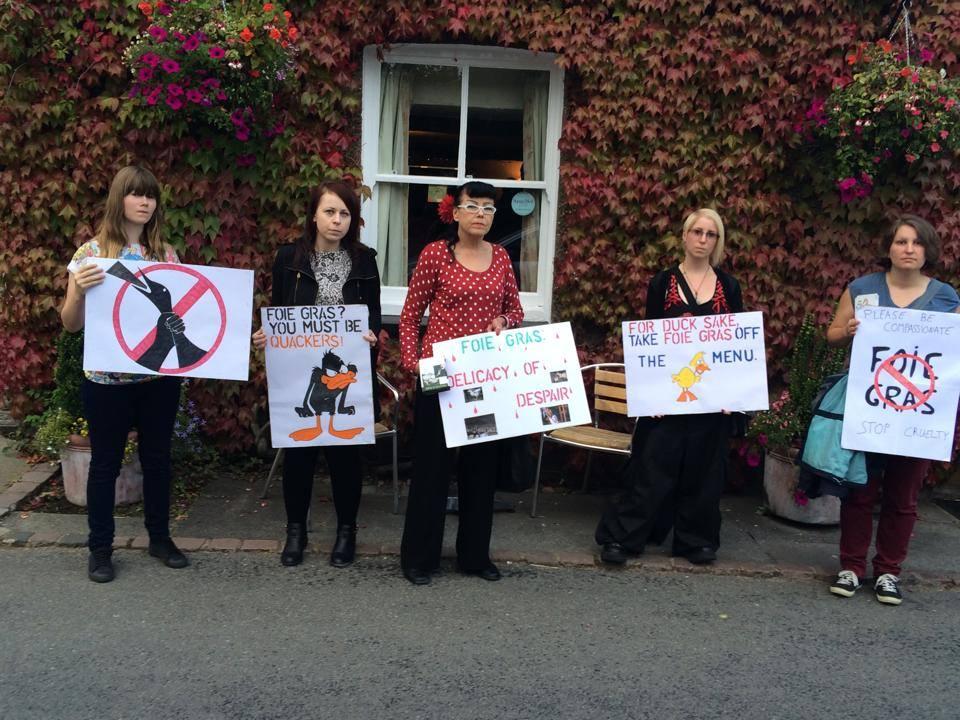 Hertfordshire Animal Rights