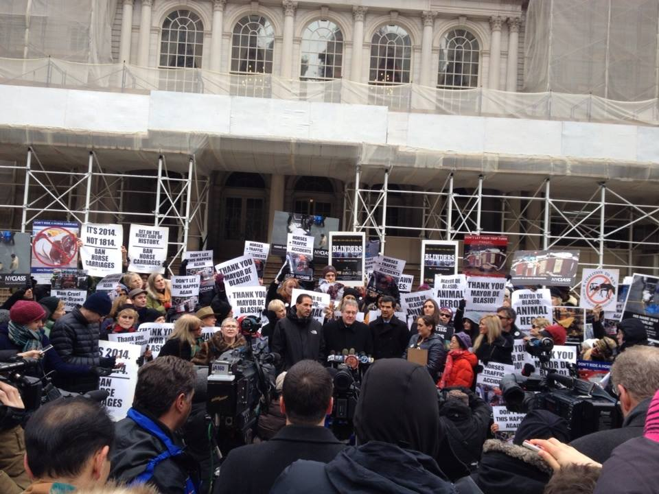 All of the advocacy groups rallied at City Hall in support of the bill