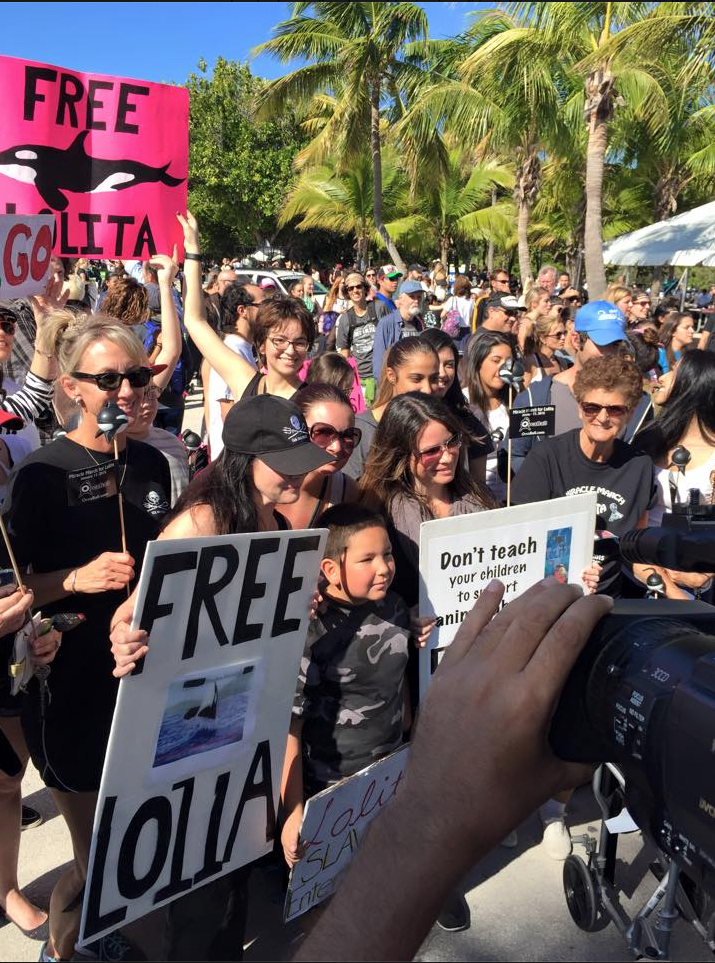 Miracle March for Lolita at Miami Seaquarium