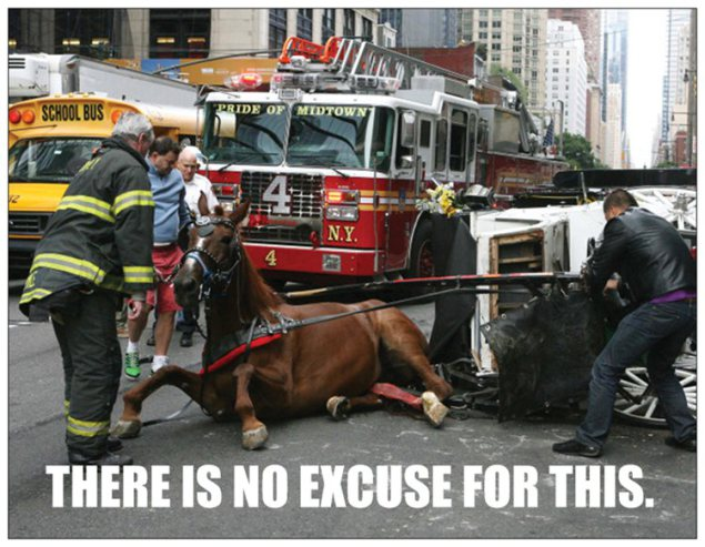 One of many postcards being sent by NYCLASS to NYC lawmakers
