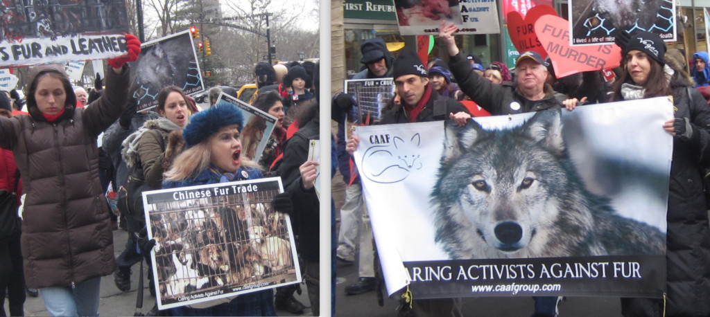Caring Activists Against Fur Valentine's Day Protest (photo: Roberto Bonelli)