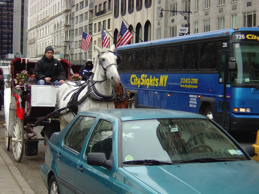 Horse-drawn carriages in midtown traffic?