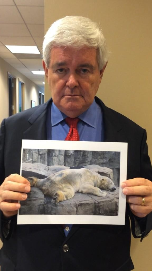 Newt Gingrich, former Speaker of the House, tweets for Arturo