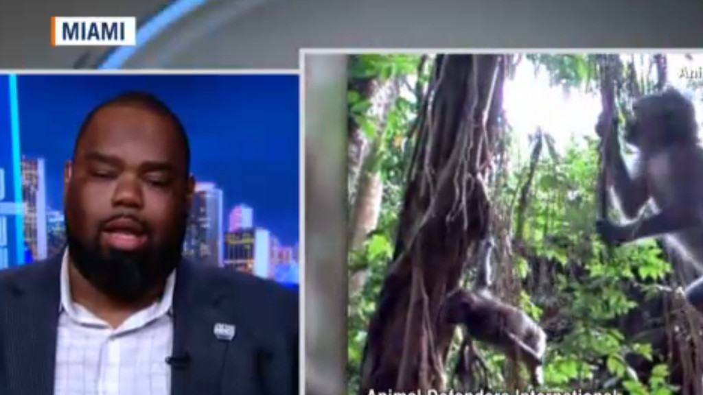Florida state senator Dwight Bullard hits the airwaves to ask Hendry County to pause construction of Bioculture's monkey breeding facility