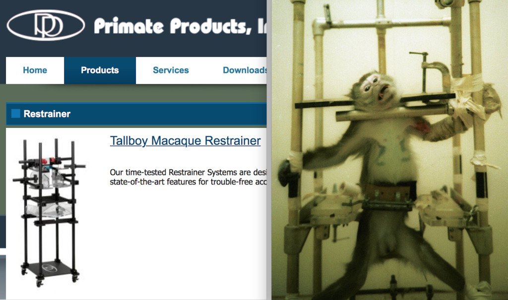 monkey restrainer for lab experiments