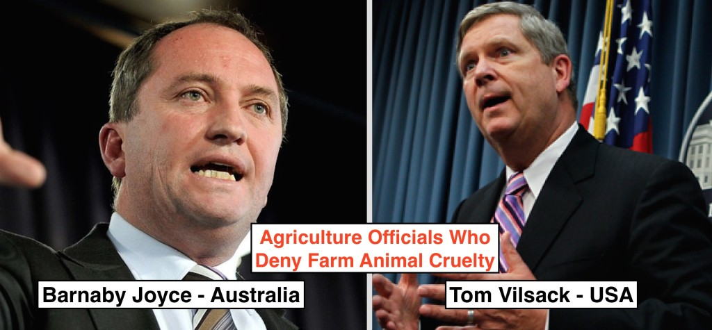 Has Australia's Minister of Agriculture Barnaby Joyce met his match?