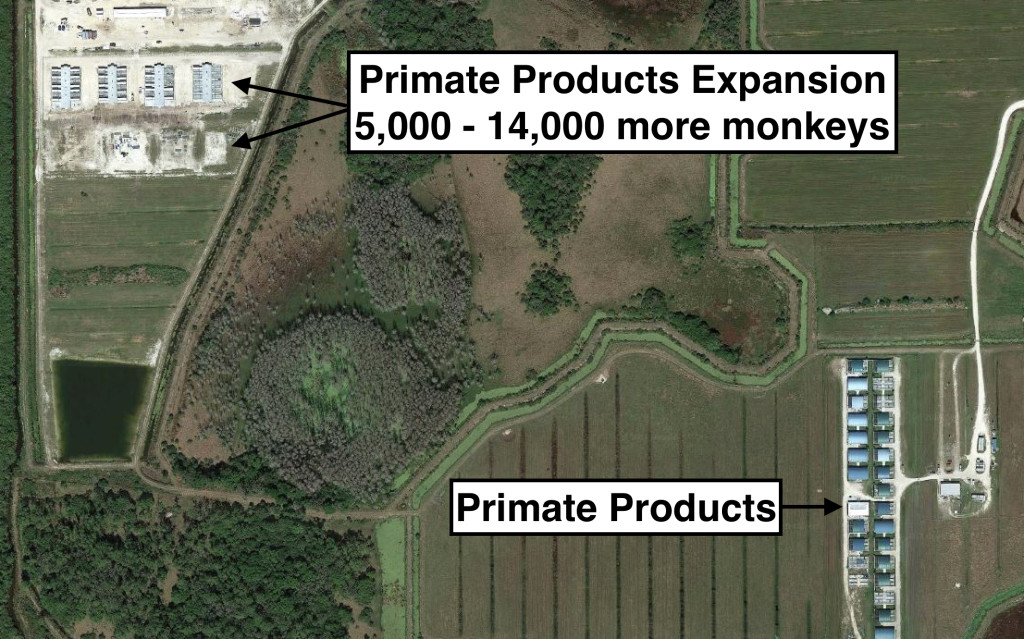 Primate-Products-Expansion