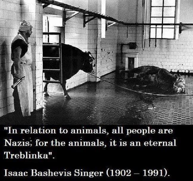 The animal holocaust