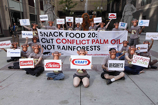 "The Rainforest Action Network targets the top 20 companies that use unsustainable, or ""conflict,"" palm oil."