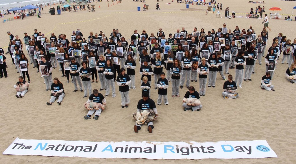 2015 National Animal Rights Day in Los Angeles (photo: Carole Raphaelle Davis)