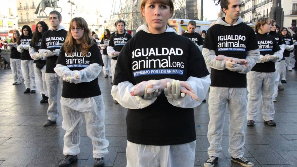 animal-rights-ceremony-spain