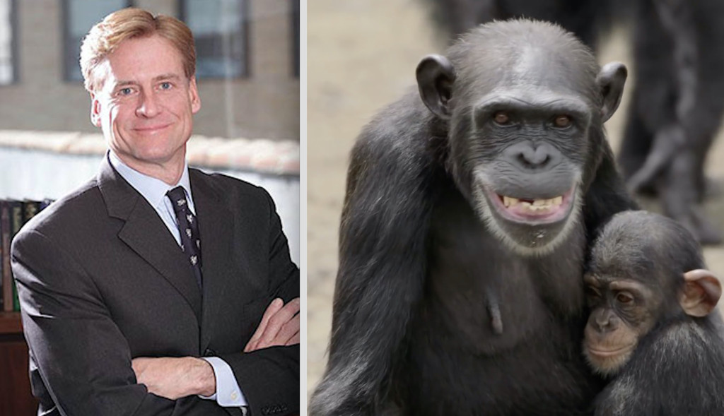 Christopher Hillyer, CEO of NYBC who earns over $1.2 million/year, has left chimps to starve to death.