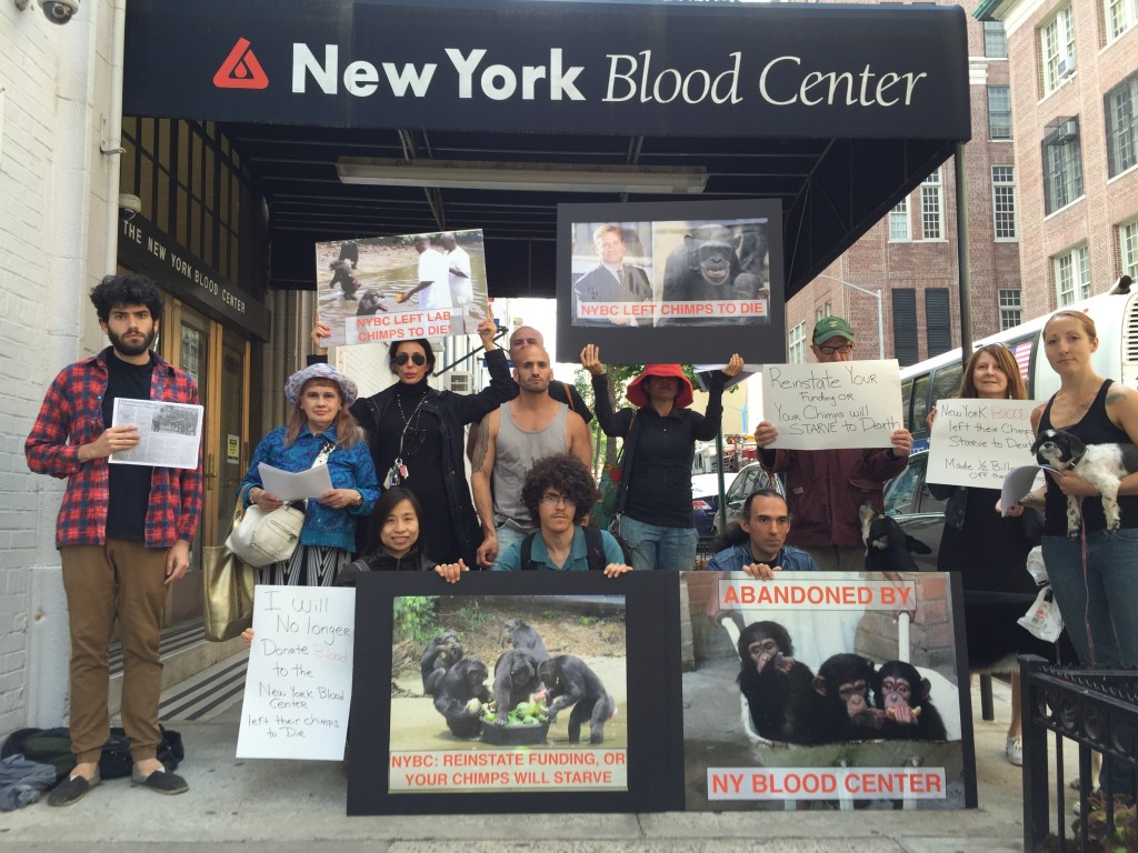 Activists protest NYBC's decision to abandon chimps after experimenting on them for 30 years