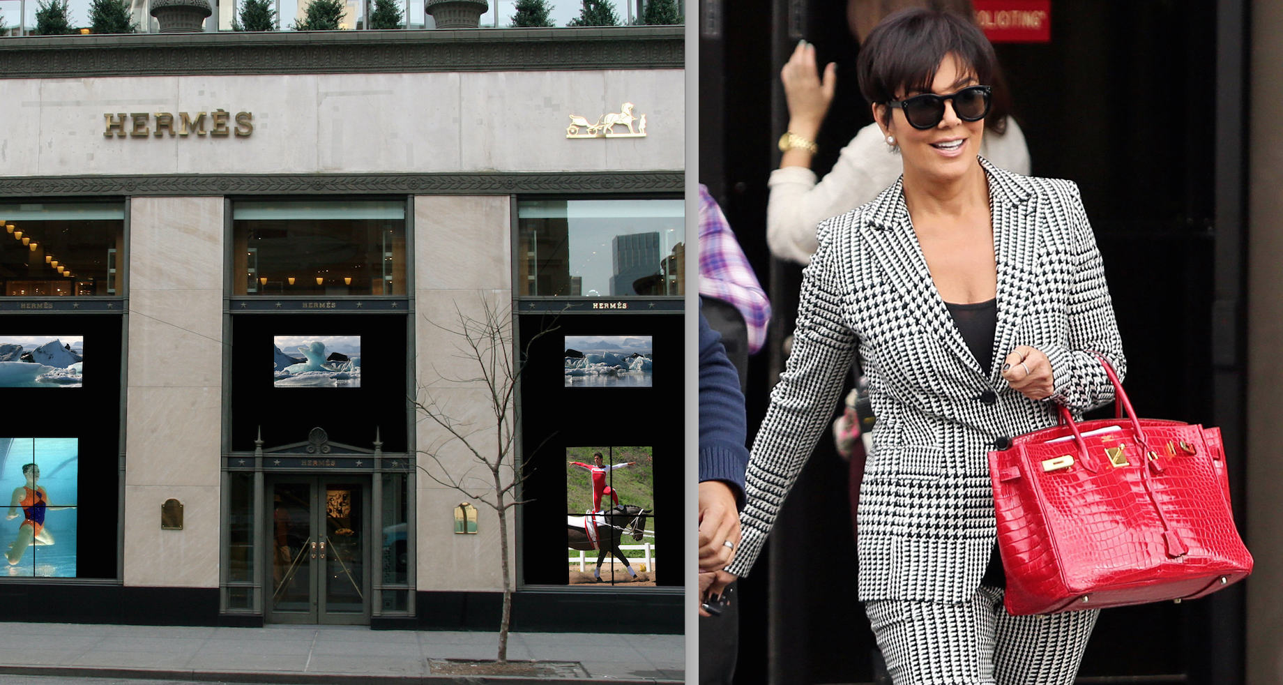 Undercover investigators expose atrocities on alligator farms that reality star kris jenner wears herms purse made from alligator skin photo purseblog buycottarizona