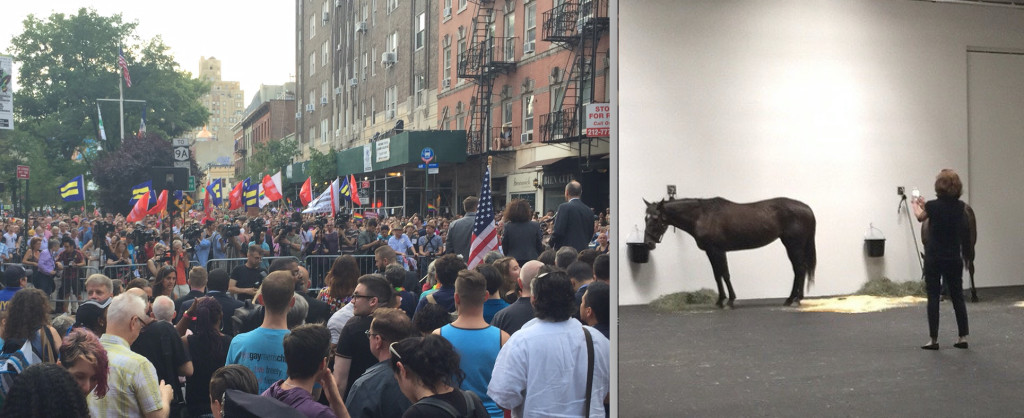 Just a few blocks away from the freedom to marry celebration, horses in art gallery were stripped of freedom to move
