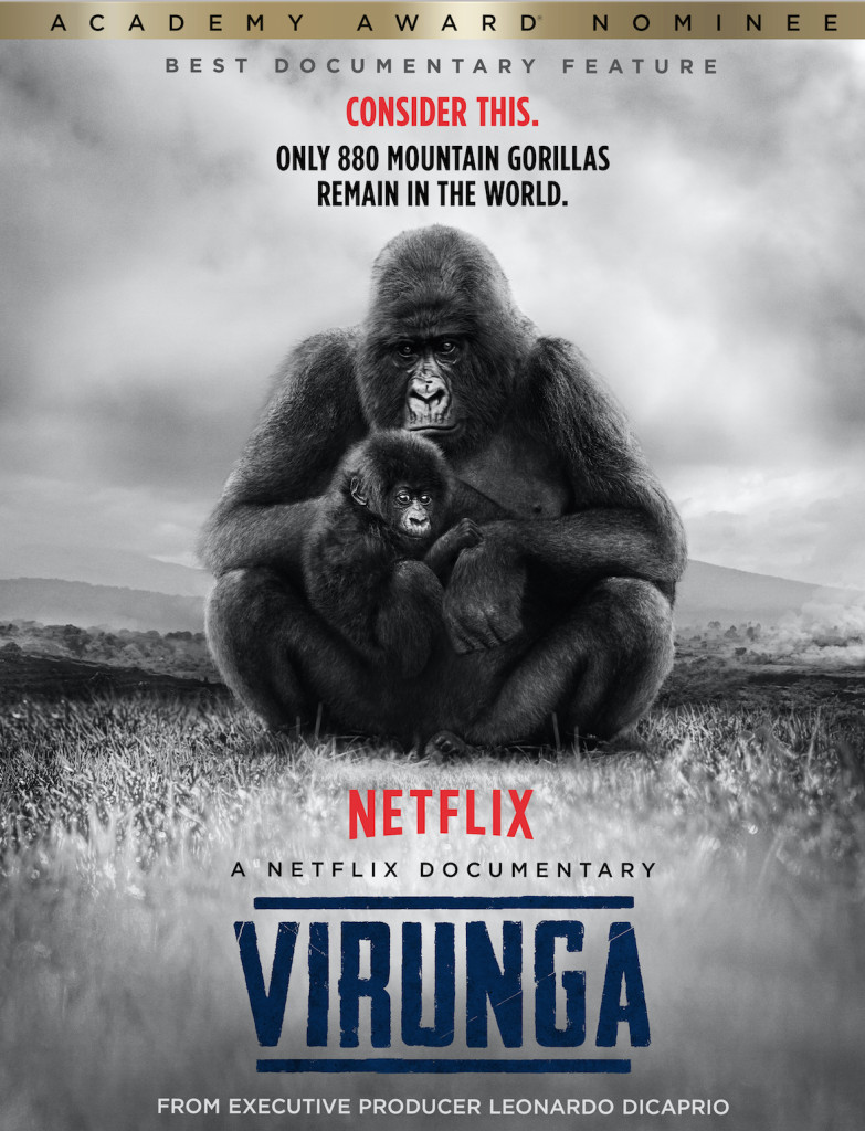 Virunga won the Zelda Penzel Giving Voice to the Voiceless Award at the 2014 HIFF