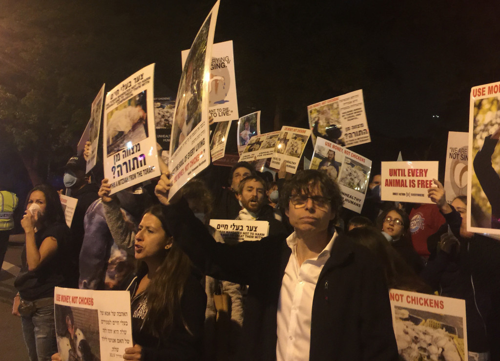 Activists protest Kaporos chicken massacre in Brooklyn