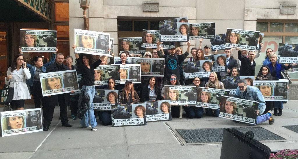 Activists demand that NYBC board member Laurie Glimcher reinstates funding for the group's ex-lab chimps