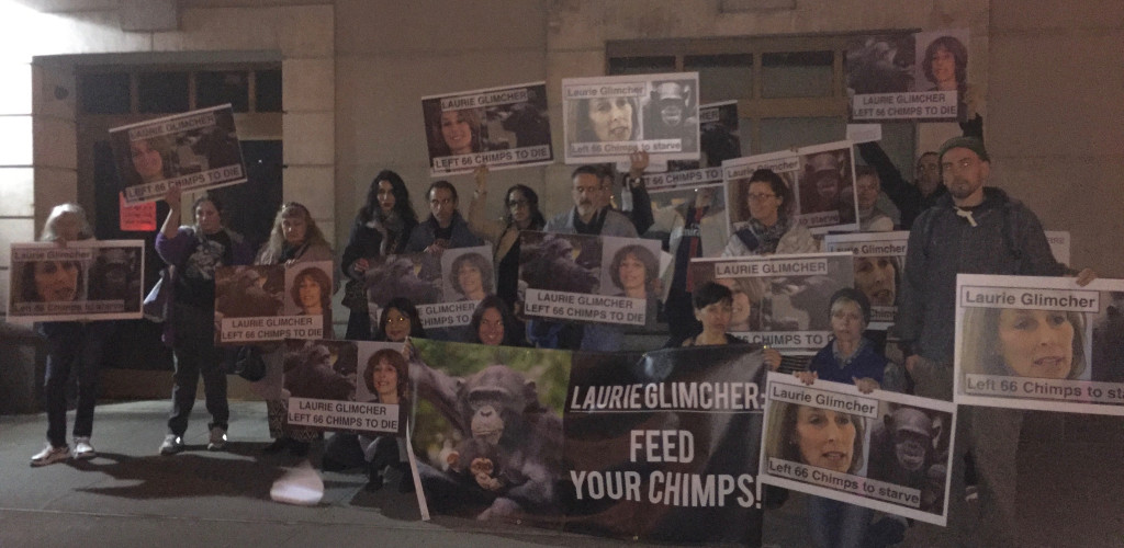 Laurie Glimcher's neighbors are growing increasingly frustrated by the loud chanting outside of their windows, but the chants and protests will continue until Dr. Glimcher demands that NYBC reinstate the funding for the chimps.