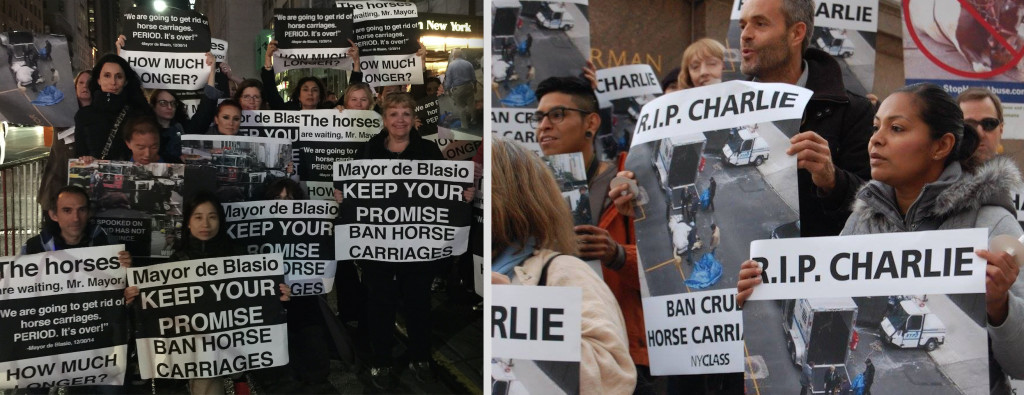 Activists groups in NYC stage two protests demanding the Mayor de Blasio fulfill his promise to ban horse-drawn carriages