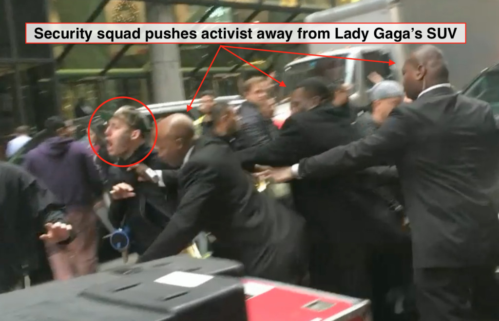 Animals First activists protest Lady Gaga for glamorizing fur