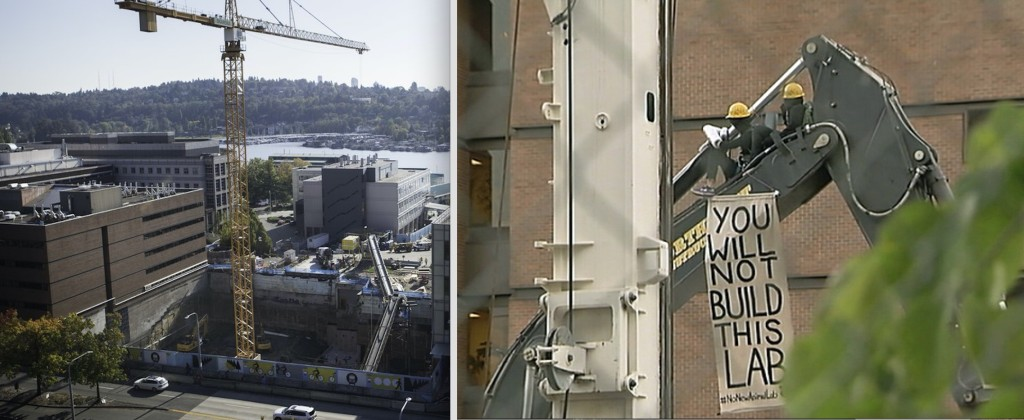 No New Animal Lab activists occupy a crane to halt construction of underground lab at the University of Washington