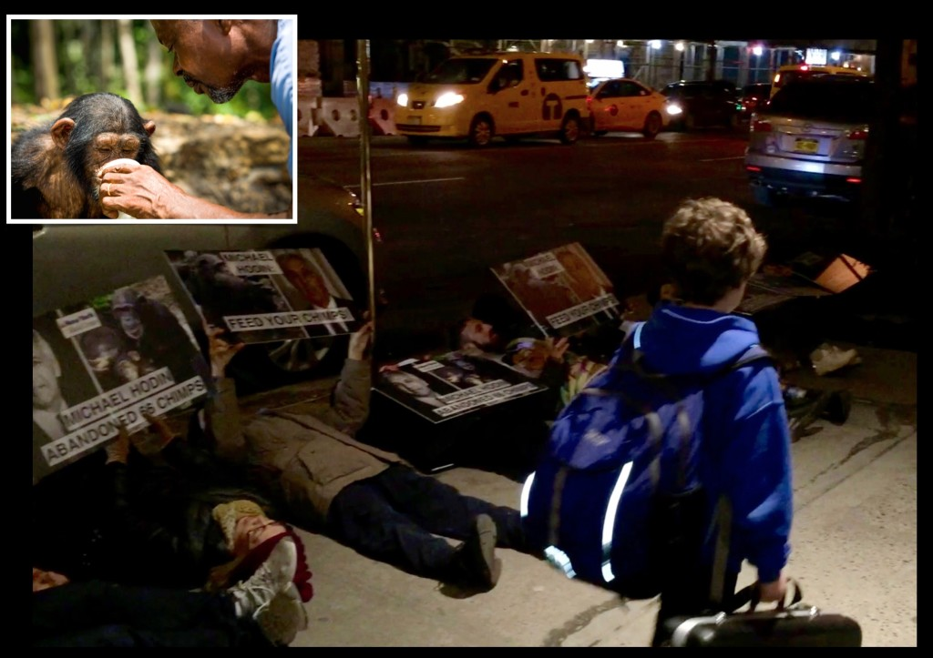 Activists stage die-in at the home of Michael Hodin, a New York Blood Center board member