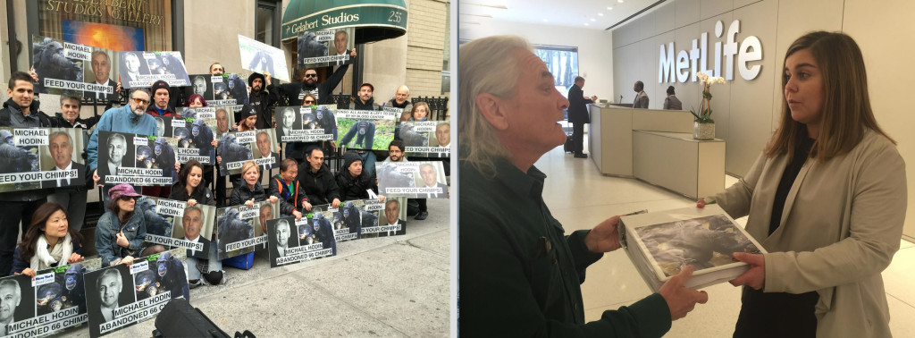 From left to right: Activists in NYC stage an NYBC protest; Primatologist Bob Ingersoll delivers a petition to MetLife, NYBC's largest corporate donor.