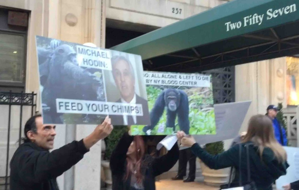 Advocates inform Michael Hodin's neighbors about his decision to abandon 66 chimps with no food or water