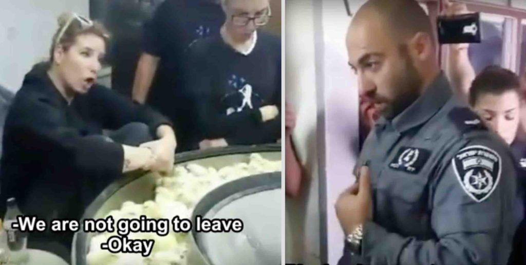 Israeli animal rights activists occupy a chick hatchery and shuts down a macerator in the process of grinding newborn male chicks.