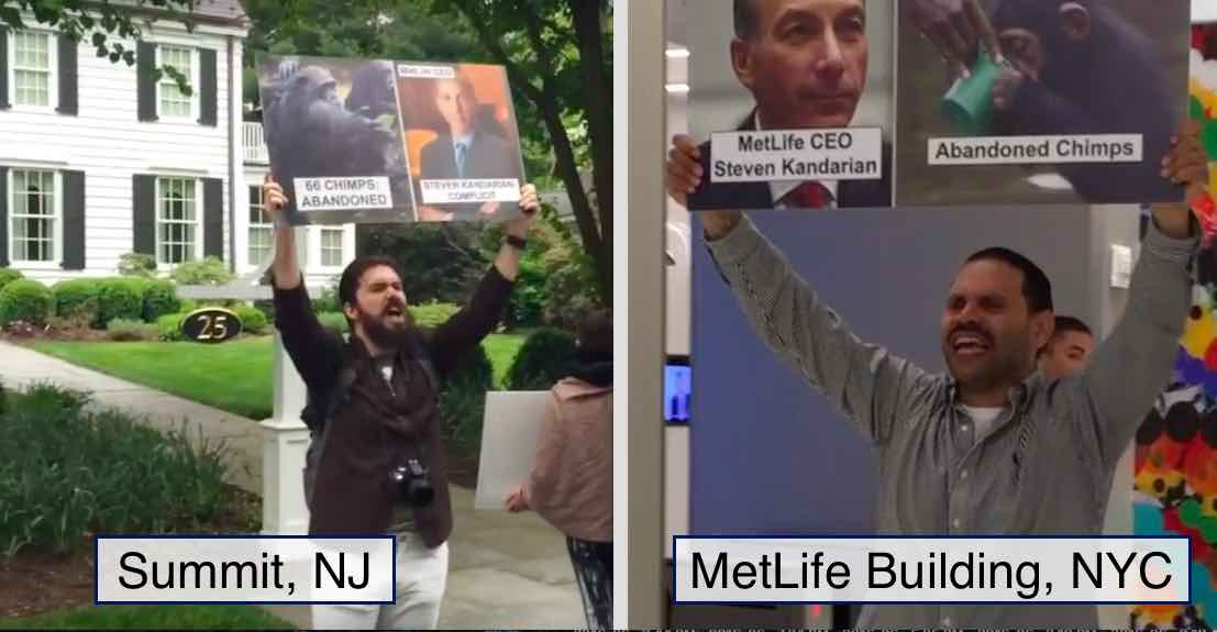 Activists protest at the home of MetLife's CEO in Summit NJ and at its headquarters in NYC.