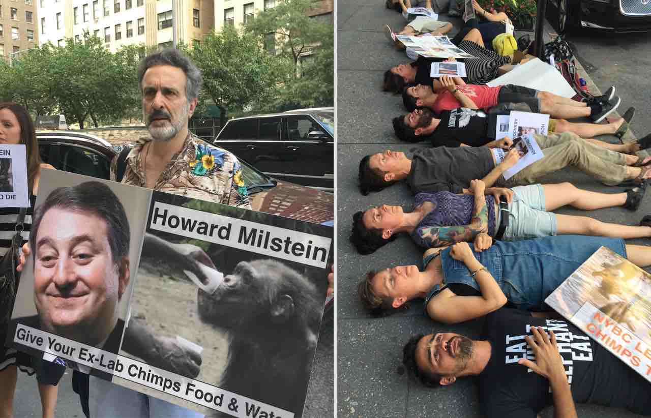 Animal rights advocates protest and stage a die-in outside Howard Milstein's Park Ave. home on behalf of the chimpanzees abandoned by NYBC when he served as the chairman of its board.