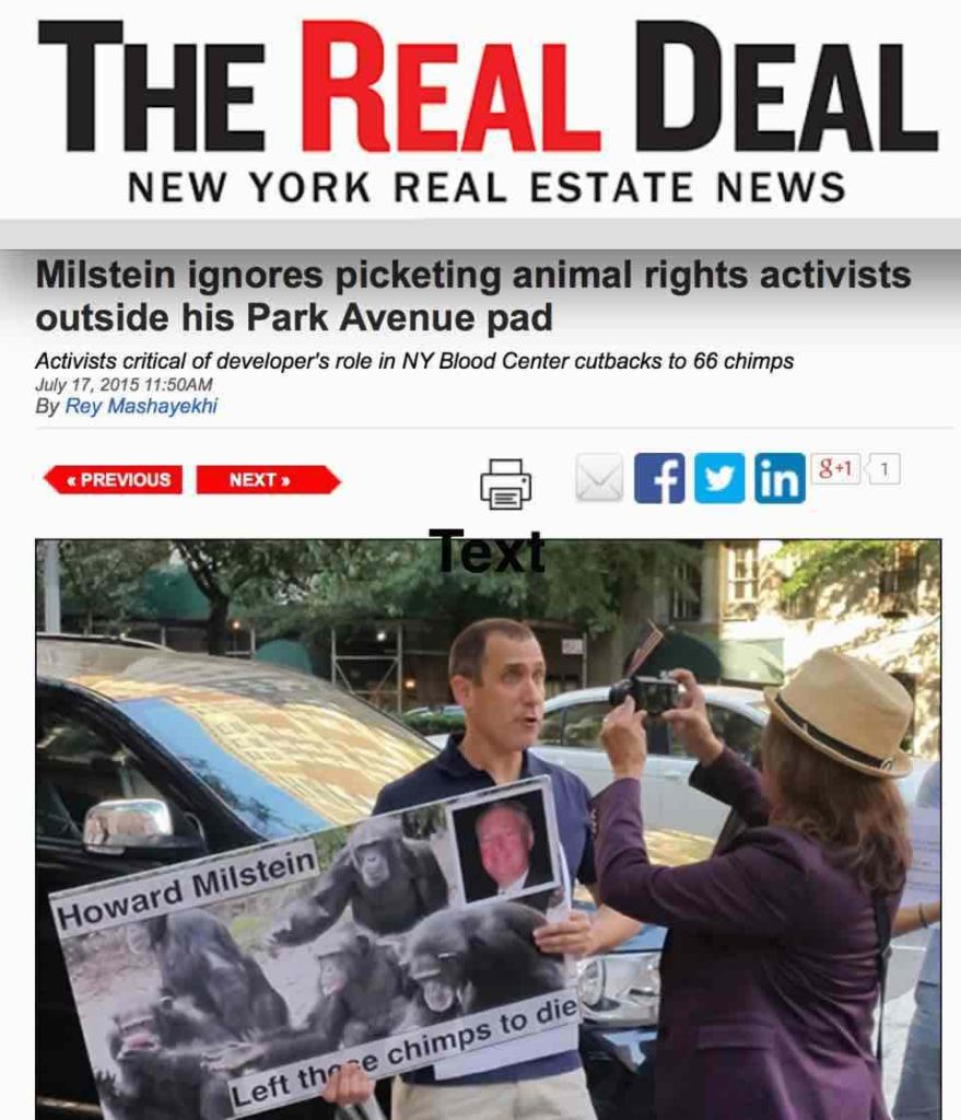 The Real Deal reports on protests held at Milstein's park ave. home in support of the 66 chimpanzees abandoned by the NY Blood Center.
