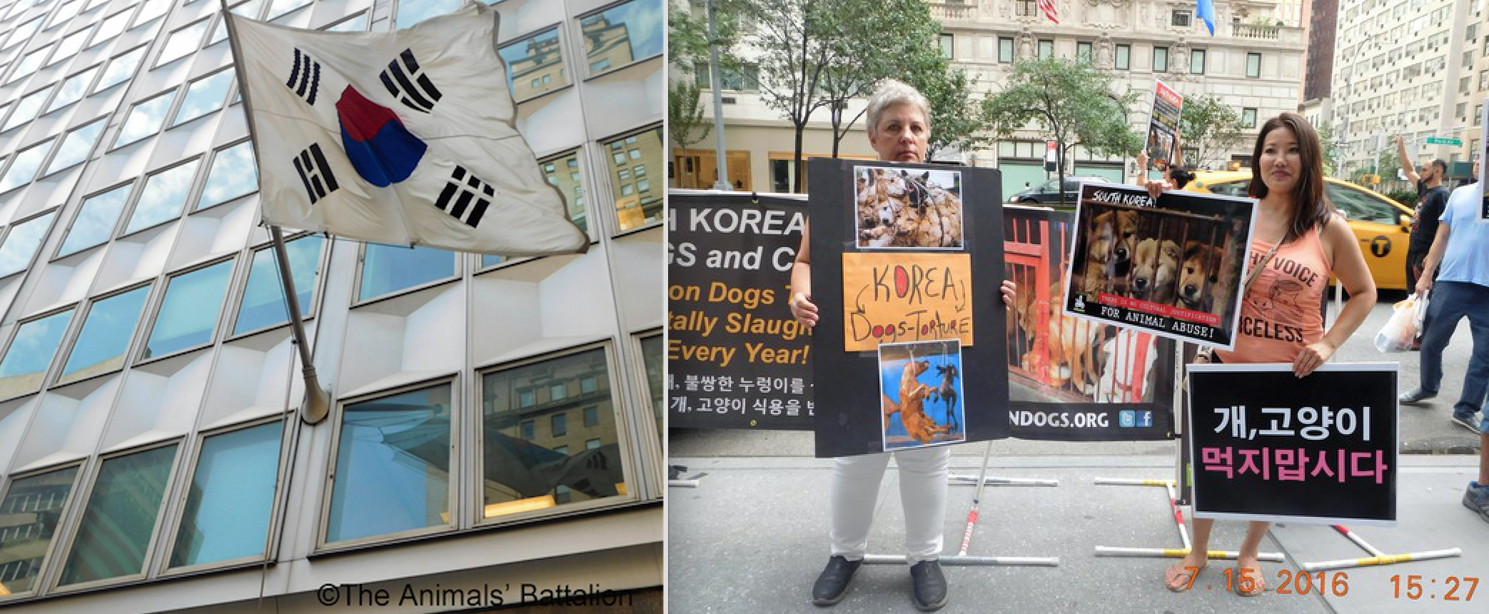 Animal rights activists protesting at the Korean embassy.