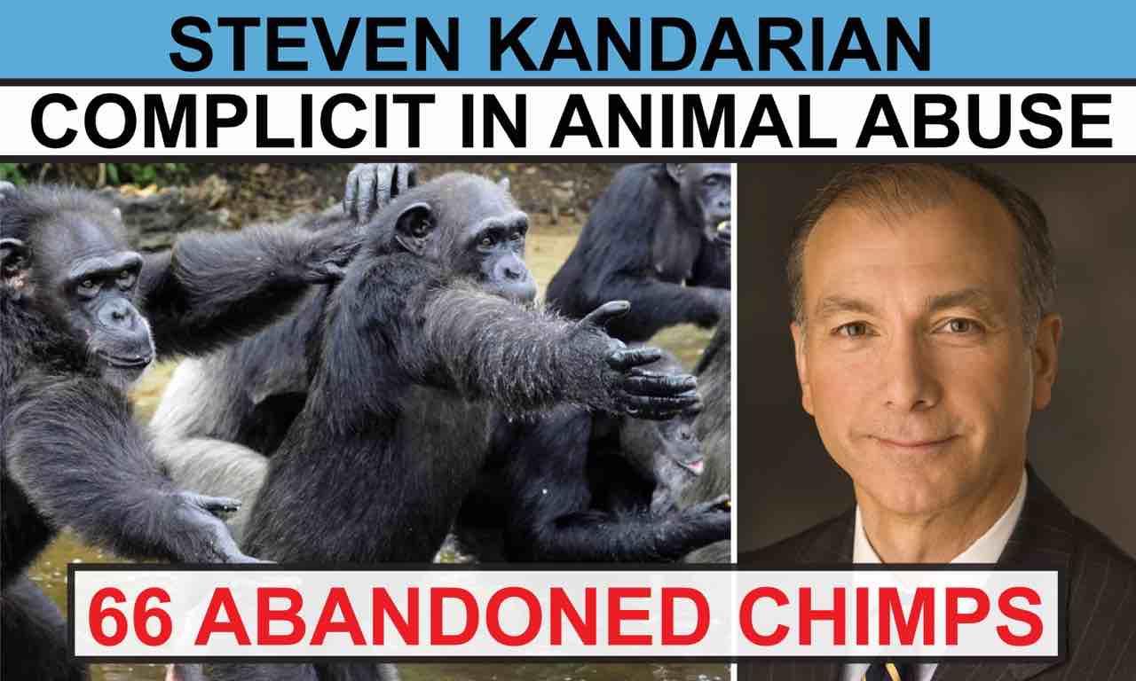 Steven Mandarin is the CEO of MetLife.