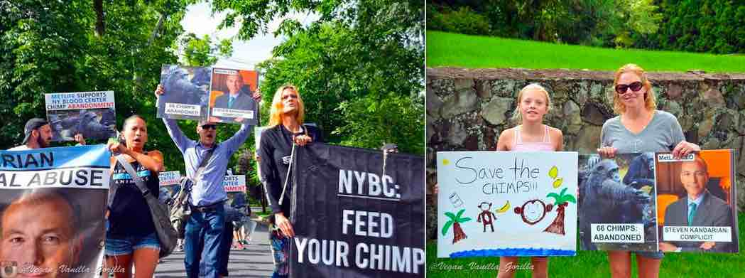 Activists protest in Summit, NJ, the home of MetLife's CEO.