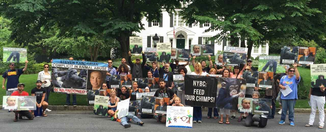 Activists protest at the home of MetLife's CEO, Steven Mandarin.