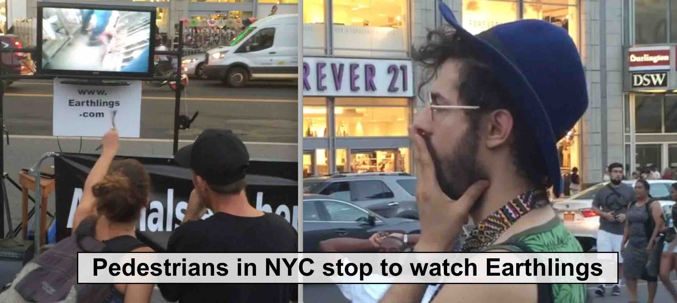 Pedestrians in NYC stop to watch the documentary film Earthlings