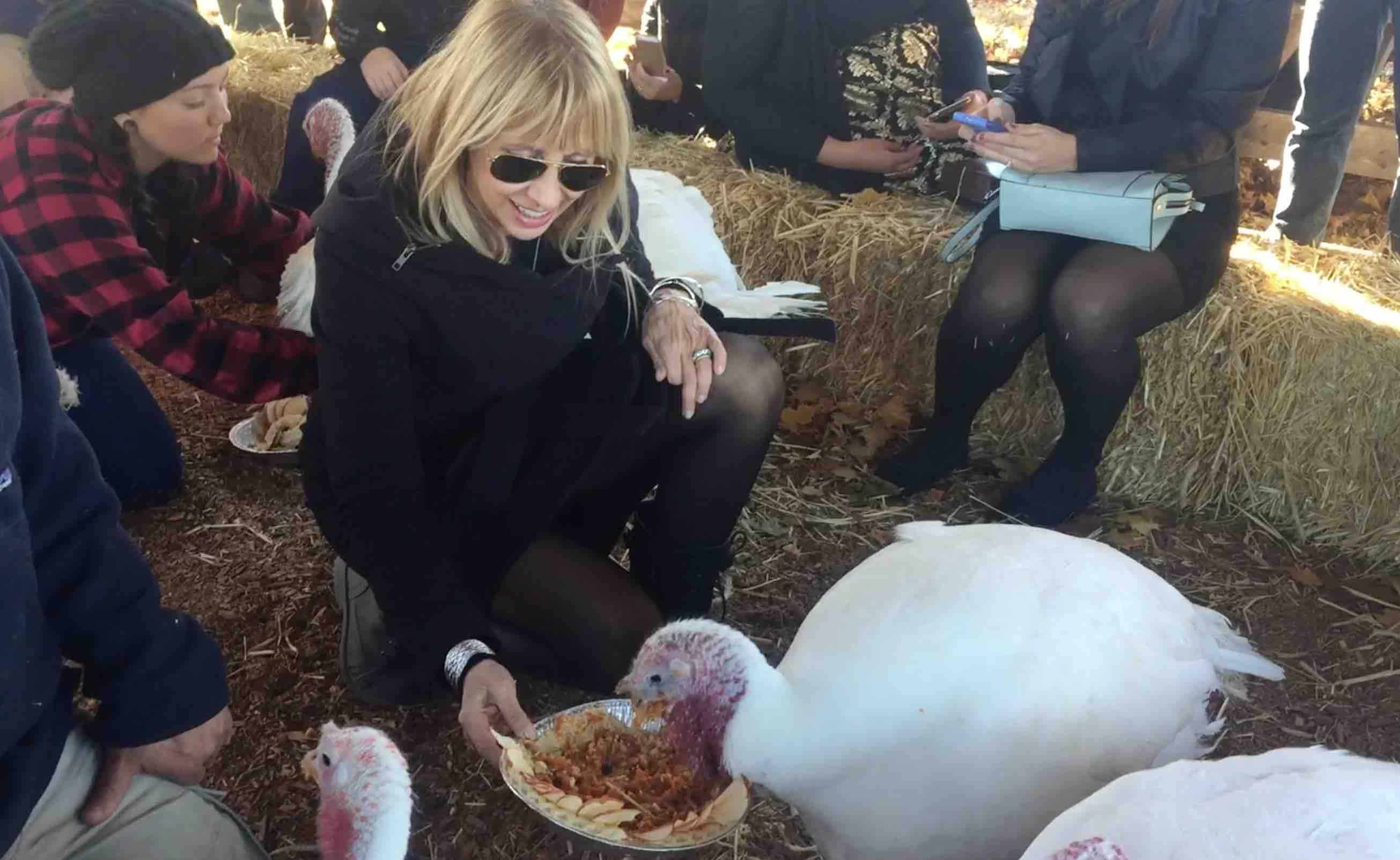 Feeding the turkeys at Woodstock Farm Sanctuary is an annual ThanksLiving ritual