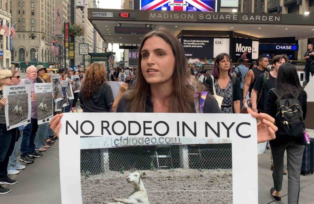 Their Turn Animal Rights News Commentary And Calls To